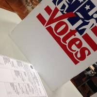 ...........NH.vote.11.5.13.M.Buckawicki.wc.cca.1.3m